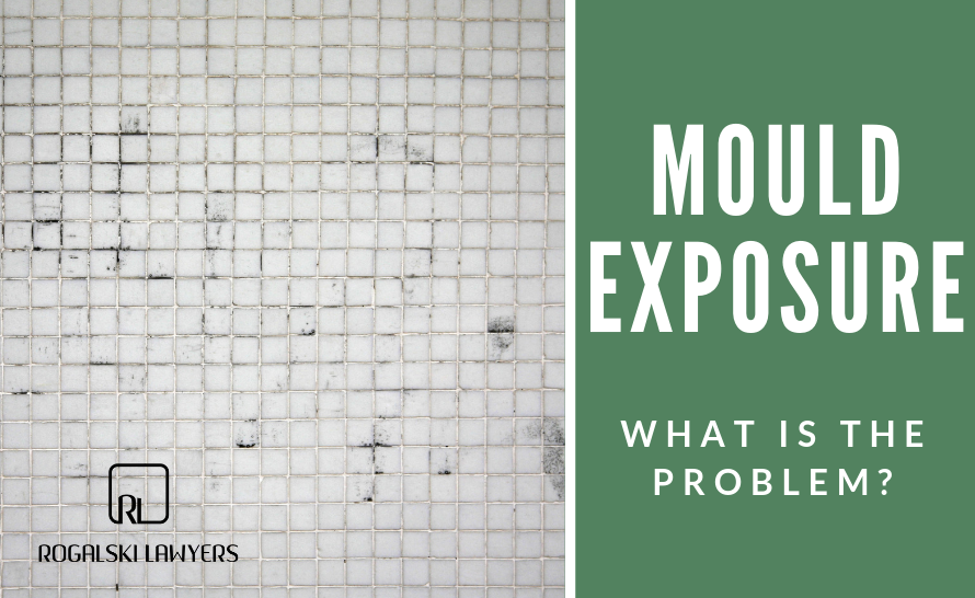 Mould Exposure. What is the Problem?